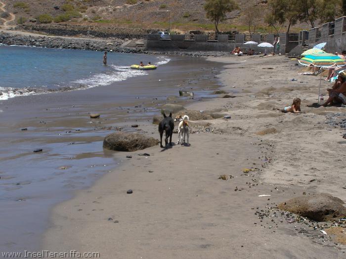 el_puertito_www.inselteneriffa.com-11