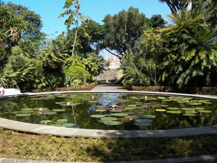 jardin_botanico_puerto_de_la_cruz_www.inselteneriffa.com-23