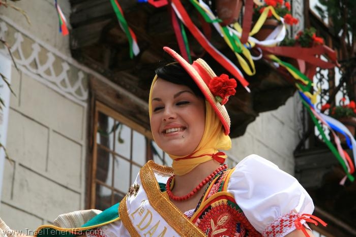 romeria_san_isidro_la_orotava_2008_www.inselteneriffa.com-66