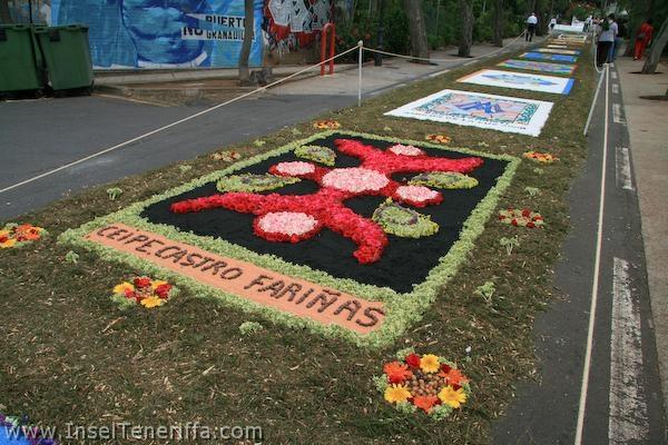 sandteppiche_tacoronte_2008_www.inselteneriffa.com-92