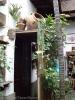 casa_de_los_balcones_la_orotava_www.inselteneriffa.com-54