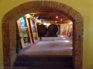 casa_del_vino_www.inselteneriffa.com-17