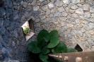 casa_lercaro_la_orotava_www.inselteneriffa.com-4