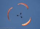flypa_2008_www.inselteneriffa.com-117