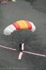 flypa_2008_www.inselteneriffa.com-123