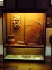 iberoamerikanisches_museum_www.inselteneriffa.com-8