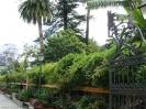jardin_botanico_la_orotava_www.inselteneriffa.com-1