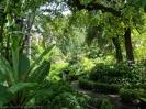 jardin_botanico_la_orotava_www.inselteneriffa.com-3