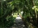 jardin_botanico_puerto_de_la_cruz_www.inselteneriffa.com-11