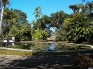 jardin_botanico_puerto_de_la_cruz_www.inselteneriffa.com-13