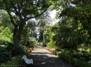 jardin_botanico_puerto_de_la_cruz_www.inselteneriffa.com-28