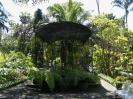 jardin_botanico_puerto_de_la_cruz_www.inselteneriffa.com-33