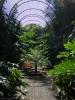 jardin_botanico_puerto_de_la_cruz_www.inselteneriffa.com-36