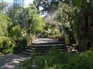jardin_botanico_puerto_de_la_cruz_www.inselteneriffa.com-4