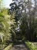 jardin_botanico_puerto_de_la_cruz_www.inselteneriffa.com-50