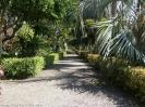 jardin_botanico_puerto_de_la_cruz_www.inselteneriffa.com-9