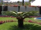 jardin_del_marquesado_la_orotava_www.inselteneriffa.com-5