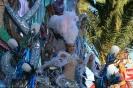 karnevalsunzug_santa_cruz_2008_inselteneriffa.com-14