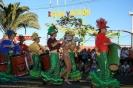 karnevalsunzug_santa_cruz_2008_inselteneriffa.com-20