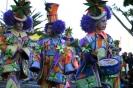 karnevalsunzug_santa_cruz_2008_inselteneriffa.com-35