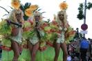 karnevalsunzug_santa_cruz_2008_inselteneriffa.com-38