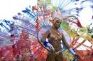 karnevalsunzug_santa_cruz_2008_inselteneriffa.com-49