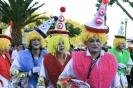 karnevalsunzug_santa_cruz_2008_inselteneriffa.com-58