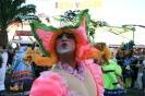 karnevalsunzug_santa_cruz_2008_inselteneriffa.com-64