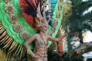 karnevalsunzug_santa_cruz_2008_inselteneriffa.com-67