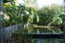 parque_de-la_constiucion_la_laguna_www.inselteneriffa.com-6