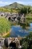 parque_pedro_gonzalez_la_laguna_www.inselteneriffa.com-20