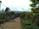 parque_sortija_puerto_de_la_cruz_www.inselteneriffa.com-12