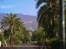 parque_sortija_puerto_de_la_cruz_www.inselteneriffa.com-21