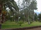 parque_sortija_puerto_de_la_cruz_www.inselteneriffa.com-4