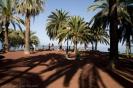 parque_taoro_puerto_de_la_cruz_www.inselteneriffa.com-2