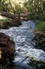 parque_taoro_puerto_de_la_cruz_www.inselteneriffa.com-28