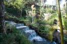 parque_taoro_puerto_de_la_cruz_www.inselteneriffa.com-3