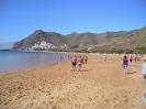 playa_las_teresitas_inselteneriffa.com-14