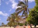 playa_las_teresitas_inselteneriffa.com-7