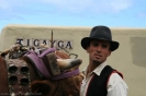 romeria_san_isidro_la_orotava_2008_www.inselteneriffa.com-105
