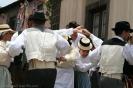 romeria_san_isidro_la_orotava_2008_www.inselteneriffa.com-53