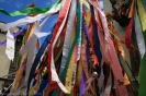 romeria_san_isidro_la_orotava_2008_www.inselteneriffa.com-85