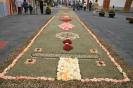 sandteppiche_la_laguna_2008_www.inselteneriffa.com-102