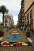 sandteppiche_la_laguna_2008_www.inselteneriffa.com-105