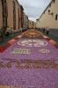 sandteppiche_la_laguna_2008_www.inselteneriffa.com-112