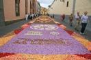 sandteppiche_la_laguna_2008_www.inselteneriffa.com-58