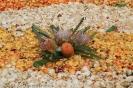 sandteppiche_la_laguna_2008_www.inselteneriffa.com-61