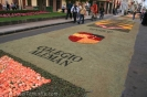 sandteppiche_la_laguna_2008_www.inselteneriffa.com-96