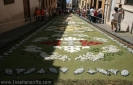 sandteppiche_la_orotava_2008_www.inselteneriffa.com-17