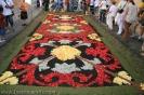 sandteppiche_la_orotava_2008_www.inselteneriffa.com-36